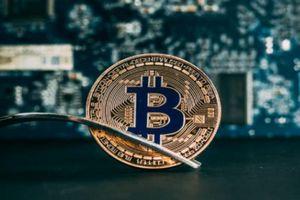 Giá tiền ảo hôm nay (12/11): Roger Ver nói việc nâng cấp Bitcoin Cash rất 'lờ mờ'
