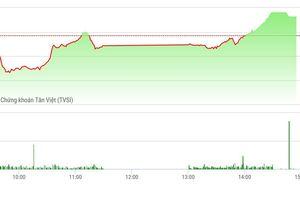 Chứng khoán chiều 12/11: Thị trường ấm hơn nhờ blue-chips