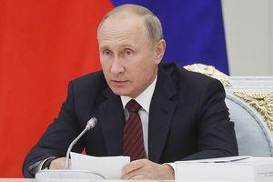 Tổng thống Putin ủng hộ kế hoạch thành lập quân đội chung của Châu Âu