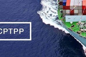 Việt Nam là quốc gia thứ 7 phê chuẩn Hiệp định CPTPP