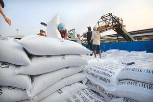 Xuất khẩu gạo: Đổi chất, đa dạng hóa thị trường