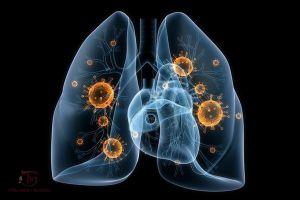 Bệnh phổi nguyên nhân, triệu chứng và phác đồ điều trị tận gốc