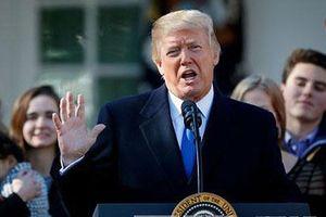 Mỹ: Đảng Dân chủ khởi động các cuộc điều tra Tổng thống Donald Trump