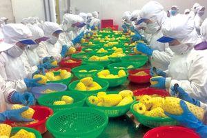 Xuất siêu 6,42 tỉ USD - Kỷ lục về cán cân thương mại của Việt Nam
