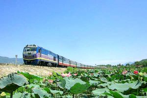 Cần 58,71 tỷ USD xây đường sắt tốc độ cao Bắc - Nam