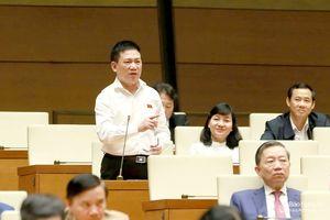 Đại biểu Hồ Đức Phớc: Kiểm toán Nhà nước đóng góp tích cực trong phòng, chống tham nhũng
