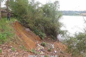 Sạt lở bờ sông diễn biến phức tạp, tỉnh Quảng Trị khẩn cấp làm kè ứng phó