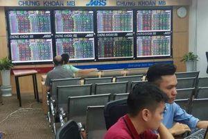 Chứng khoán ngày 13/11: Dòng tiền yếu, thị trường giảm sâu