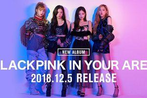 BlackPink thông báo phát hành full album đầu tiên: Gây bất ngờ vì không phải tiếng Hàn