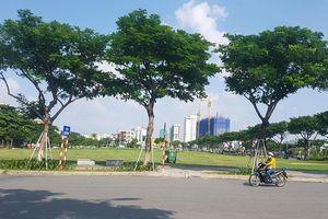 Đà Nẵng báo cáo Thủ tướng Chính phủ về việc hủy kết quả đấu giá lô 'đất vàng'