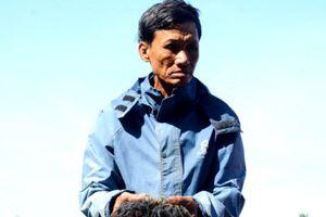 Quảng Nam: Hơn 10 vạn con tôm nuôi bất ngờ chết trắng hồ