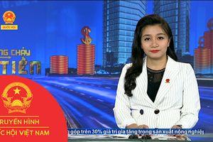 BẢN TIN DÒNG CHẢY CỦA TIỀN TRƯA NGÀY 13/11/2018