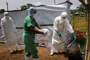Dịch Ebola tại Congo diễn biến đáng lo ngại