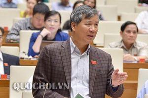 Đại biểu Nguyễn Anh Trí: Không còn uy tín nên chủ động từ chức, đừng như 'con lươn, con chạch' leo cao