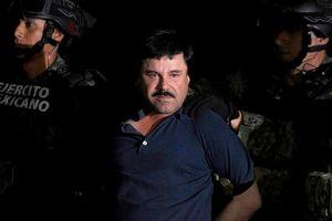Mỹ bắt đầu xét xử trùm ma túy khét tiếng 'El Chapo' Guzmán