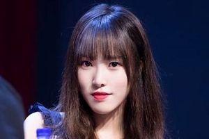 Fan phẫn nộ vì loạt thần tượng Kpop đột ngột ngừng hoạt động