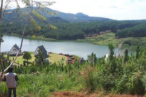 Hồ Tuyền Lâm lại bị xâm hại nghiêm trọng: Còn gì là danh thắng quốc gia?