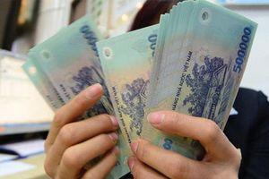 Mê tour rẻ, nhiều cán bộ hưu trí bị lừa đảo du lịch hơn 7 tỉ