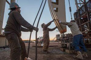 UAE kêu gọi ngành dầu khí dùng AI để cải thiện lợi nhuận