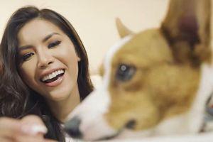 Minh Tú đưa cún cưng vào clip tự giới thiệu ở Hoa hậu Siêu quốc gia