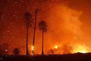 Cháy rừng thảm khốc nhất lịch sử California cướp đi sinh mạng của 42 người