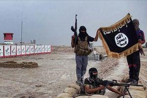 Hàng trăm tay súng IS tìm cách vượt biên giới Syria vào Iraq