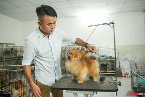 Lỡ 'phải lòng' giống chó Phốc Sóc, người đàn ông Sài Gòn tạo dựng được cơ ngơi hàng tỷ đồng