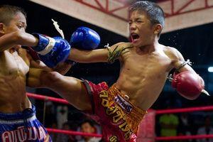 Cậu bé 13 tuổi chết gục trên sàn đấu Muay Thái thổi bùng làn sóng phẫn nộ