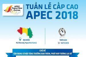 Thủ tướng Nguyễn Xuân Phúc sẽ tham dự Tuần lễ Cấp cao APEC 2018