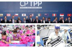Tham gia CPTPP: Việt Nam cần chủ động được nguồn nguyên liệu