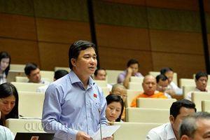 Nhiều ý kiến trái chiều của ĐBQH xoay quanh dự thảo luật Giáo dục (sửa đổi)