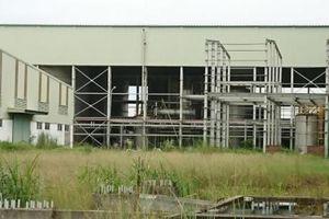 Khởi tố, bắt tạm giam đối tượng liên quan vụ án Ethanol Phú Thọ