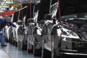Châu Âu cảnh báo đáp trả thuế nhập khẩu ôtô của Mỹ