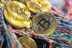 Giá Bitcoin tụt xuống mức thấp nhất trong hơn một năm