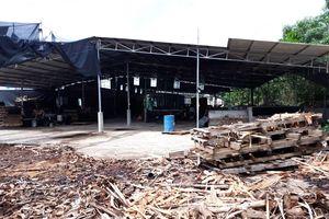 Quỳnh Lưu (Nghệ An): Ngang nhiên xây dựng tràn lan dù chưa được cấp phép