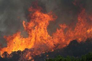 Mỹ: Huy động tù nhân dập tắt cháy rừng tại bang California