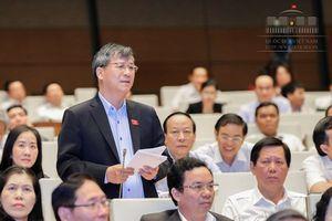 Đại biểu Quốc hội mơ ước một ngày Việt Nam sẽ có loại rượu nổi tiếng thế giới