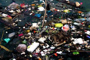 TP.HCM: Không phân loại rác, người dân có thể bị báo lên phường, xã