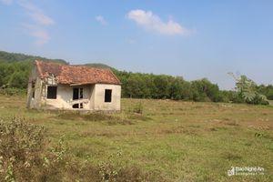 Yên Thành đề nghị thu hồi dự án trồng rừng 'treo' 6 năm
