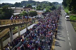 Dòng người di cư tiếp tục đổ về biên giới Mexico - Mỹ