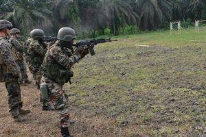 Lý do có thể khiến Mỹ rút quân khỏi châu Phi