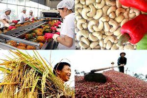 BẢN TIN TÀI CHÍNH-KINH DOANH: Nỗi lo xuất khẩu nông sản, ngừng nhập gỗ rừng từ Lào và Campuchia