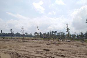 Bài 1: 'Tiền trảm hậu tấu' để đất trồng lúa biến thành đất ở đô thị?