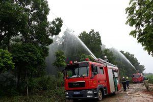 Ba Vì: Tăng cường các biện pháp chống cháy rừng