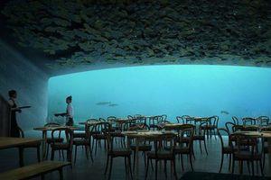 Nhà hàng dưới nước lớn nhất thế giới sắp mở cửa