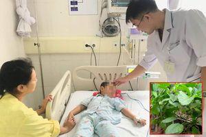 Bé 4 tuổi nguy kịch vì chữa táo bón ở nhà bằng lá cây