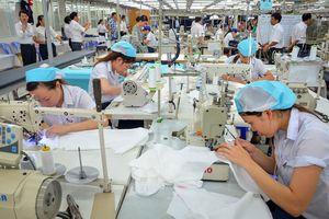TP.Hồ Chí Minh: Phổ biến chế độ, chính sách, pháp luật về BHTN cho người sử dụng lao
