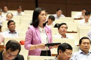 Dự thảo Luật Phòng chống tác hại rượu, bia: Đừng 'nhân danh' phát triển kinh tế, giải quyết việc làm