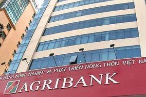 Nghi vấn công ty Tân Nam Việt được 'dàn xếp' trúng loạt gói thầu tại chi nhánh Agribank?