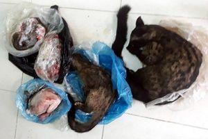 Nữ cán bộ xã rao bán động vật hoang dã trên Facebook